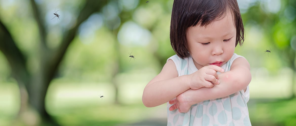 Summer and insect bites: how to protect your children